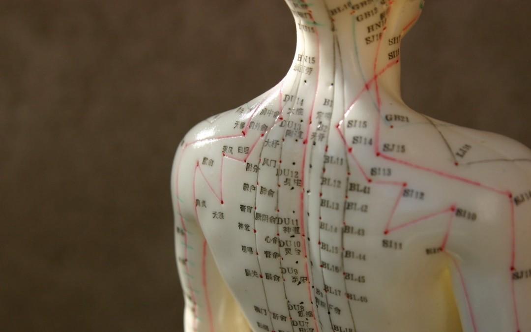 Wirkungsweise von Akupunktur entschlüsselt